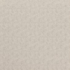 Wallpaper Amur Dove 08