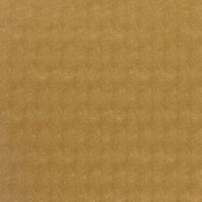 Wallpaper Amur Sunglow 36