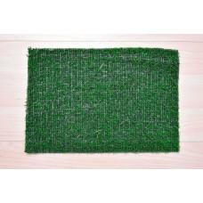 Carpet Grass 42 Vegas 2018 Verde