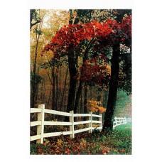 Carpet Natura 15176-110